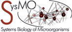 Systems Biology of Microorganisms